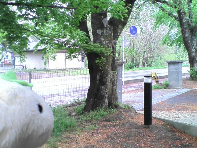 ♪スノースマイル♪な旅 vol.3